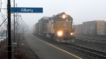 Albany Roustabout in the fog