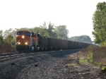 BNSF 6236 & 9361 head east out of the sun with 664