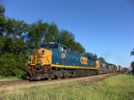 CSX 846 leads a string of YN3 paints