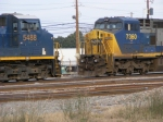 Old Vs New In Augusta Yard