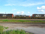 CN 254 YARD SLUG