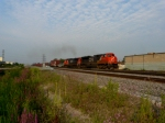 CN 8815