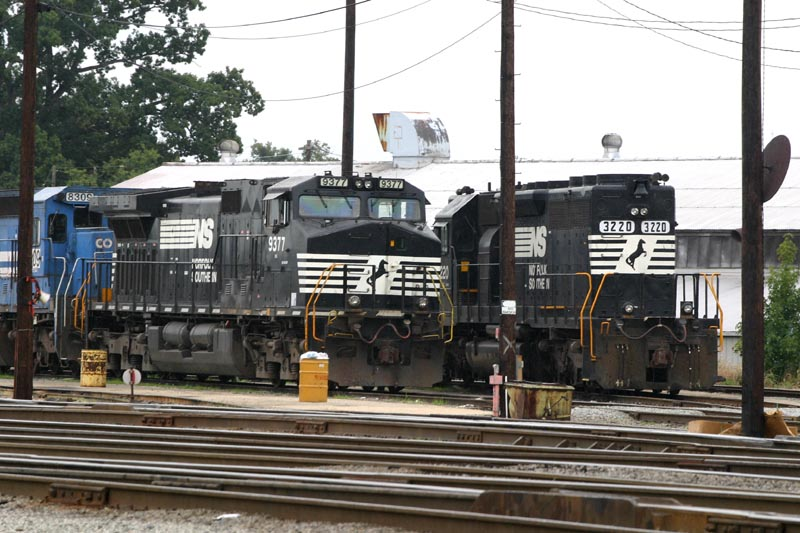 NS 9377 Poses Behind An Overfilled Trash Barrel