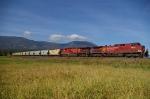 CP 9754 CP 9666