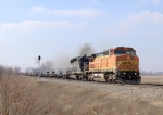 BNSF 917 and IC 6252