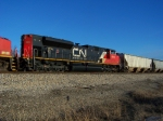 CN 8815