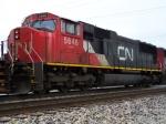 CN 5646