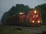 CP 5419