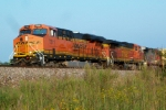 BNSF 7311 and BNSF 4378