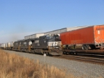 Pig train rolling meet