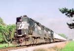 NS 7032 GP-50