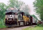 NS 9842 CW40-9 Horsehead