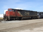 CN Full Cowled Leads BNSF Train