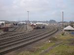 The PNWR Yard