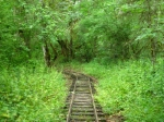 a true scenic railroad