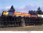 Williamete and Pacific Railroad GM/EMD GP39-2s 2312 and 2301 and GM/EMD SD9 1853