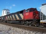 CN 5531