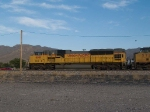 UP 8091 leads a stopped WB grain train at 7:01am
