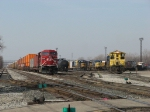 Y194 and Y195 go about their duties as X500 and Q326 wait in the yard