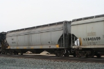 NS 850135