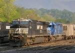 NS 9905 & CEFX 3154