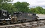 NS 8687