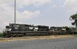 NS 2682 & 9032 (Father's Day)
