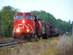 CN 2243
