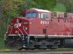 CP 8883