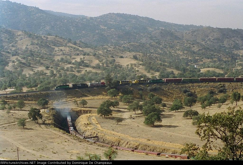 BNSF train at Walong: 7 locos from former BN and AT&SF, + 1 NS sample.