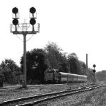 NJT 5511