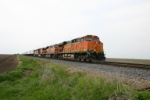 BNSF 7695 in the funky paint job