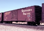 SP 667874