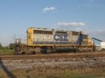 CSX #8002
