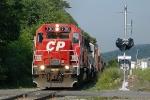 CP 513 CP 7310