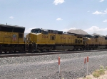 UP 9564 #2 power in a WB autorack at 12:15pm