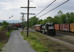 NS 5669 & NS 27 in the yard