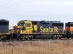 BNSF 3195
