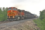 BNSF 811