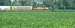 Autotrain and soybeans