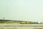 Small train in the stockyards