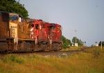 CP 9721