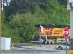 NS Scherer Coal Train