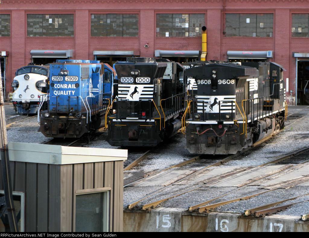Various NS Locomotives