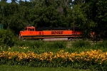 BNSF C44-9W 993 is the trailing unit on this intermodal