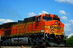 Here's a closeup of BNSF C44-9W 4123.
