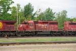 CP 5950