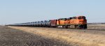 BNSF 6013