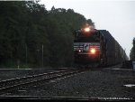 NS 295