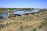 BNSF 9161 leads a westbound coal empty